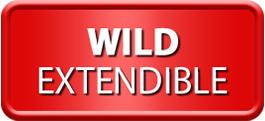 Wild Extendible