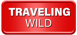 Traveling Wild