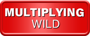 Multiplying Extra Wild