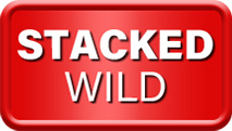 Stacked Wild Symbol