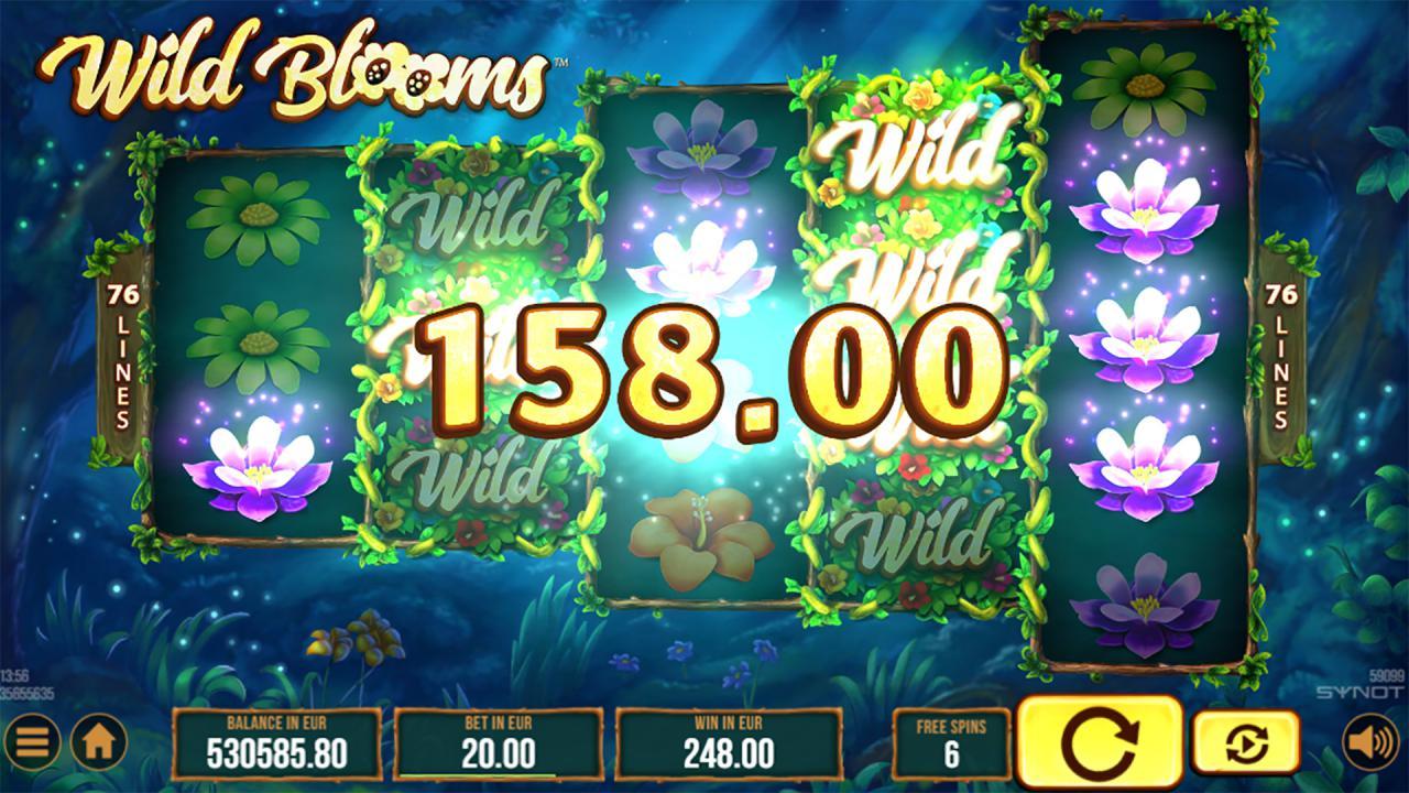 Wild Blooms win 2