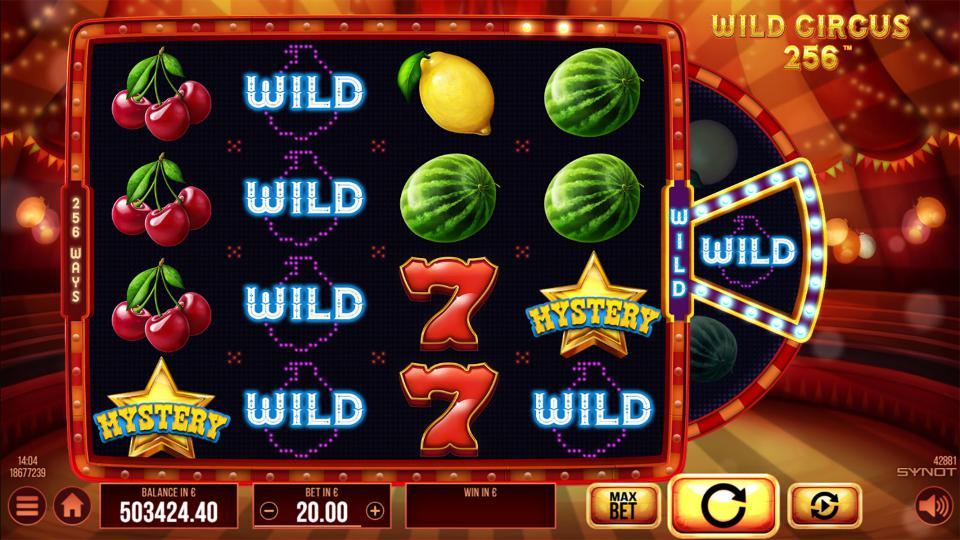 Wild Circus 256 wild symbol