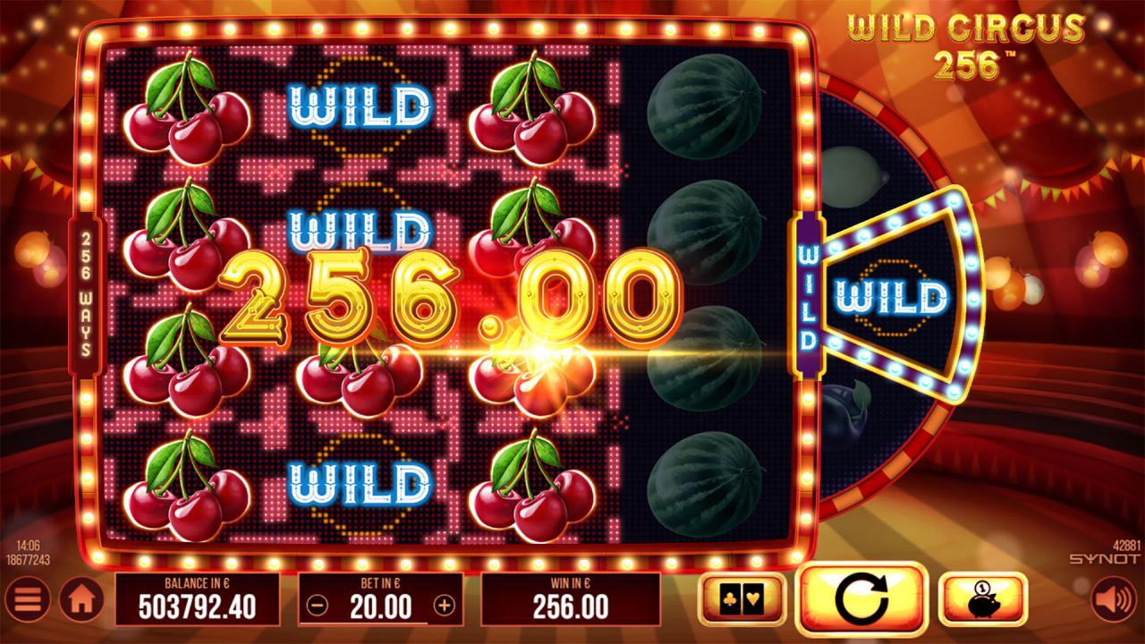Wild Circus 256 wild win