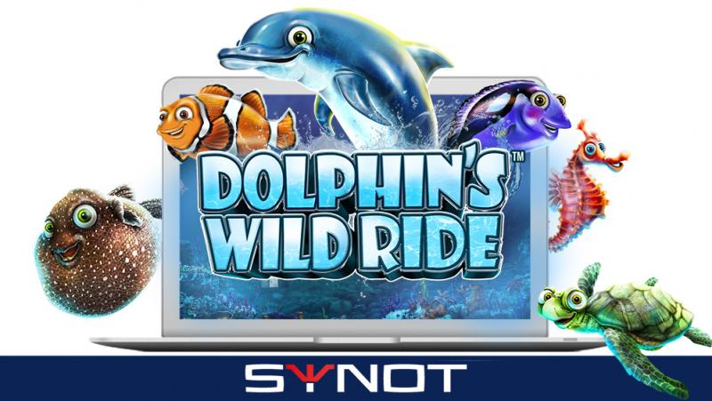 Dolphins Wild Ride listing news