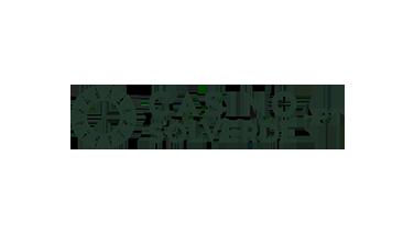 Solverde logo